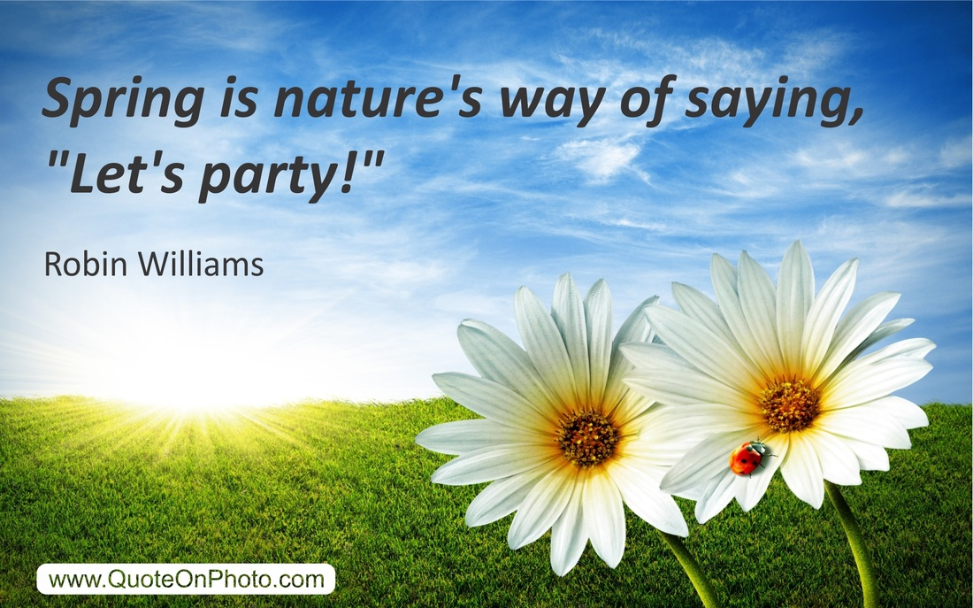 spring green quote funny recipe